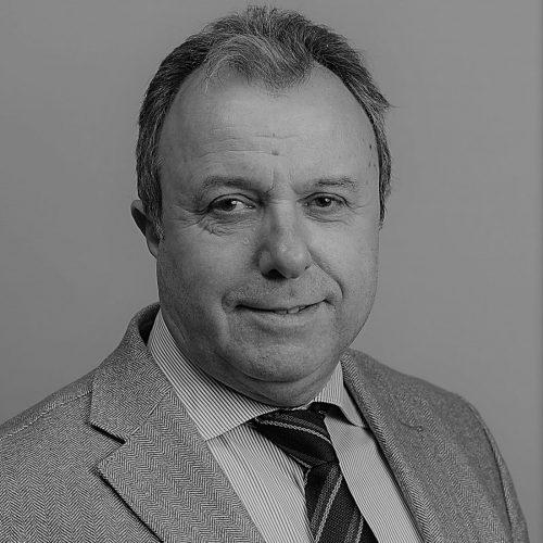 Guido N. Vincenzi